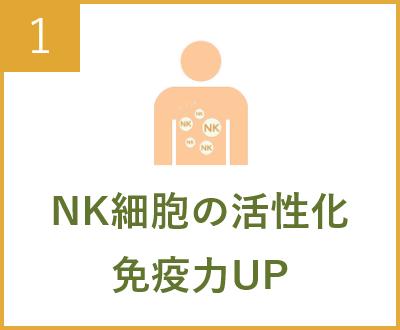 NK細胞の活性化 免疫力UP