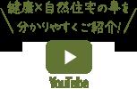 コスモレーベン YouTube